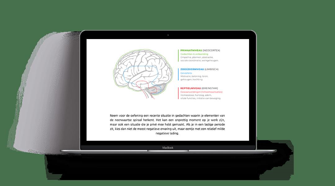 7 Pijlers Online Trainingsprogramma